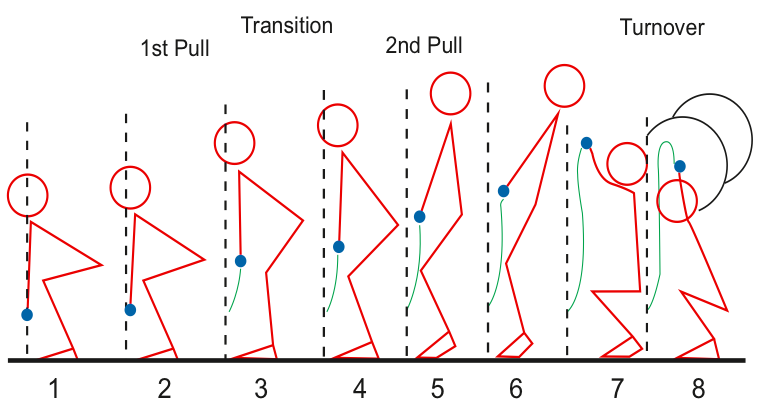 Phases of the Snatch
